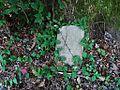Mt Joiner Cemetery Tulane Rd Memphis TN 015.jpg