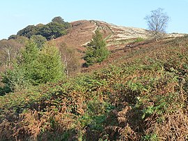 Mynydd Machen Common - geograph.org.uk - 1576377.jpg
