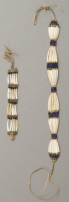 Dentalium shell - Wikipedia