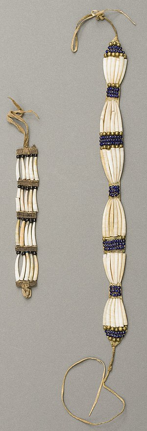 Dentalium shell - Plateau dentalium choker and bracelet, from Nez Perce National Historical Park, 19th century, made using Antalis pretiosum shells
