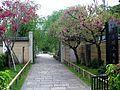 Nanzoin temple hasunumacho itabashi.JPG
