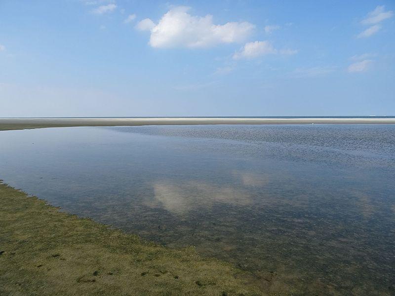 File:Nationalpark Niedersächsisches Wattenmeer - Spiekeroog - Küste nördlich der Ostplate (7).jpg