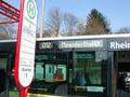 Neanderthal Bus 012.jpg