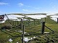 Near Garreg Lwyd - geograph.org.uk - 335785.jpg