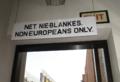 Net nieBlankes1.PNG
