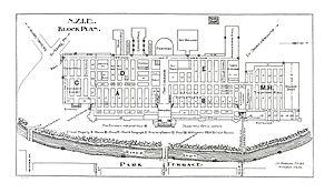International Exhibition (1906) - Plan of the Exhibition Buildings in Hagley Park