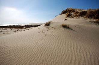 Curonian Spit - The Curonian Spit is known for its fine sandy beaches (Nida, Lithuania).