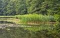 Niederlausitz 08-13 img18 Naturpark Schlaubetal.jpg
