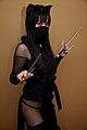 Ninja Cat.jpg