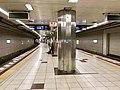 Nogizaka-Station-platform2018.jpg