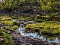 Norwegen-Bekkarfjord-2014-P1290448.jpg