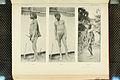 Nova Guinea - Vol 7 - Ethnographie - 1913 - Tafel 37.jpg