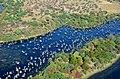 Okavango delta - Botswana - panoramio (1).jpg