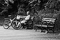 Old Man Lonely In The Park (174535499).jpeg