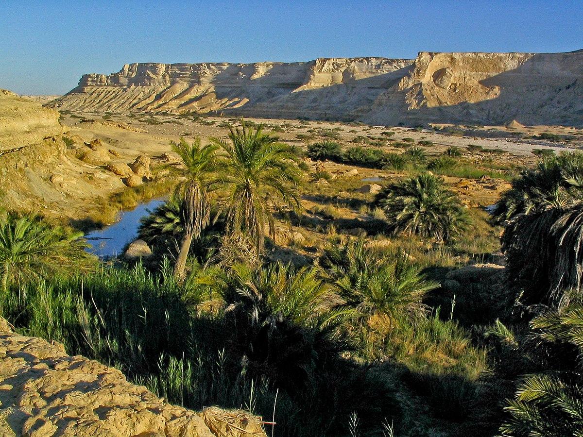 Wildlife of Oman - Wikipedia