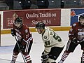 Ontario Hockey League IMG 1042 (4471395468).jpg