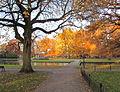 Oranjepark Apeldoorn in de herfst.jpg
