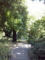 Orto botanico di Napoli 116.jpg