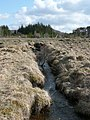 Outflow from Loch Moraig - geograph.org.uk - 767595.jpg