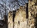 Pálos kolostorrom (12577. számú műemlék) 2.jpg