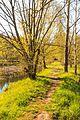 Přírodní památka Ratajské rybníky 19.jpg