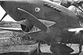 P-40C 29th Fighter Squadron May 1942.jpg