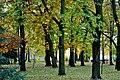 PL-PK Mielec, Park Oborskich 2013-10-13--16-09-24-002.jpg