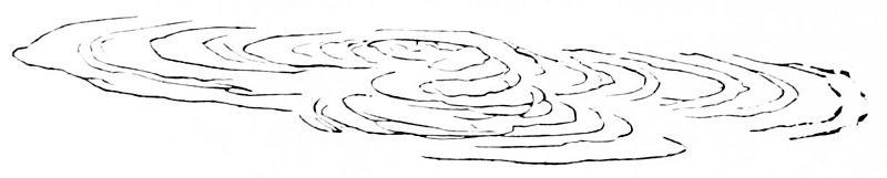 File:PSM V20 D368 Concentric folds on a mass of lava.jpg