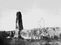PSM V67 D634 Menhirs near carnac brittany.png