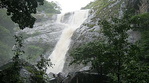 Palaruvi Falls - Palaruvi Falls