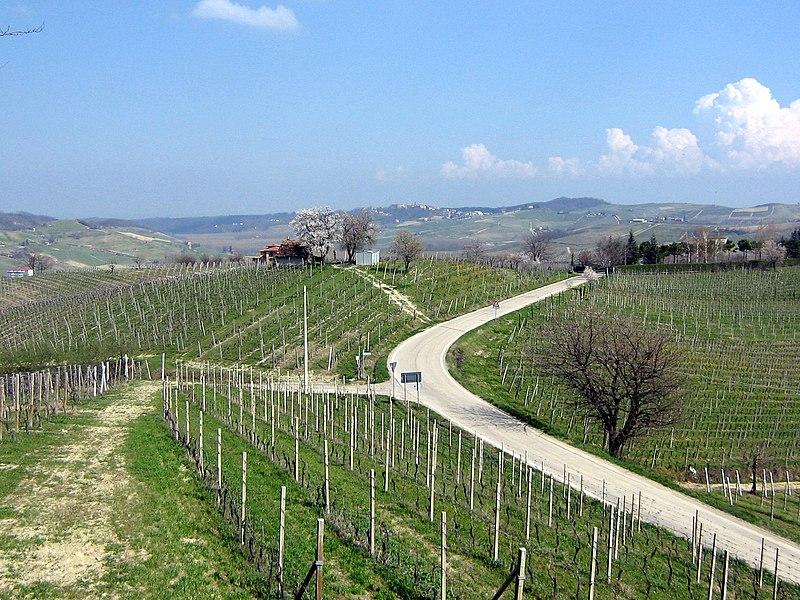 File:Panorama Fontanile.JPG