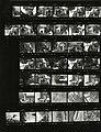 Paolo Monti - Serie fotografica (Biella, 1981) - BEIC 6335225.jpg