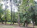 Park w Gumniskach, Tarnów - Gumniska (-) 11 pavw.JPG
