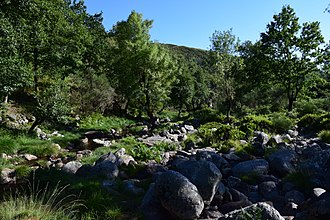 Nature Park of Alvão - The rocky margins of the Olo River in the Basal Zone in the nature park