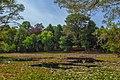 Parque Saval Valdivia (190572155).jpeg