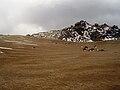 Parque nacional del Teide 1.jpg