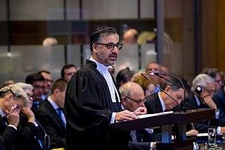 Payam Akhavan Human rights lawyer