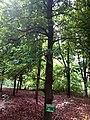 Paysage Jardin des Plantes et de la Nature de Porto.jpg