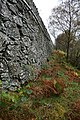 Permissive Footpath Below Wallow Crag (2) - geograph.org.uk - 597802.jpg