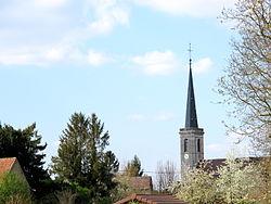 Petit Noir Jura France IMG 0447.JPG