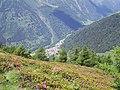 Pezzo dal sentiero n° 2 tra i rododendri - panoramio.jpg