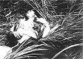 Phong Nhi massacre 3.jpg