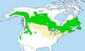 Picoides arcticus distr.png