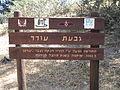 PikiWiki Israel 35125 Ein Saifan Odeds Hill.JPG