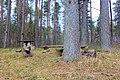 Piknika vieta - panoramio.jpg