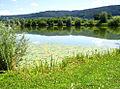 Plüderhausener See.jpg
