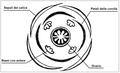 Plantago major - Diagramma fiorale.png