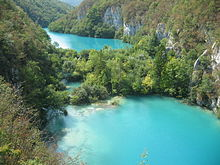 Two greenish-blue lakes in a forest