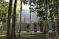 Poetén Campechan, Calakmul, Campeche (22199413825).jpg