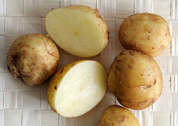 Pomme de terre variété bonnotte